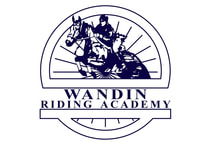 The busty riding academy